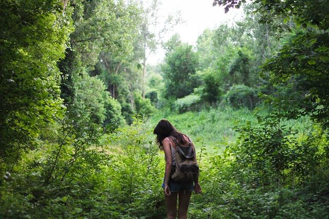 Prechádzky v prírode regenerujú nielen telo ale aj mozog