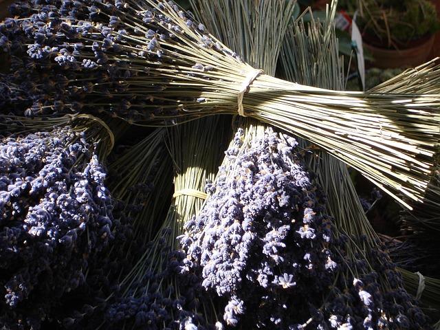 Opojná vôňa levandule je nevyhnutne spojená so štýlom Provence
